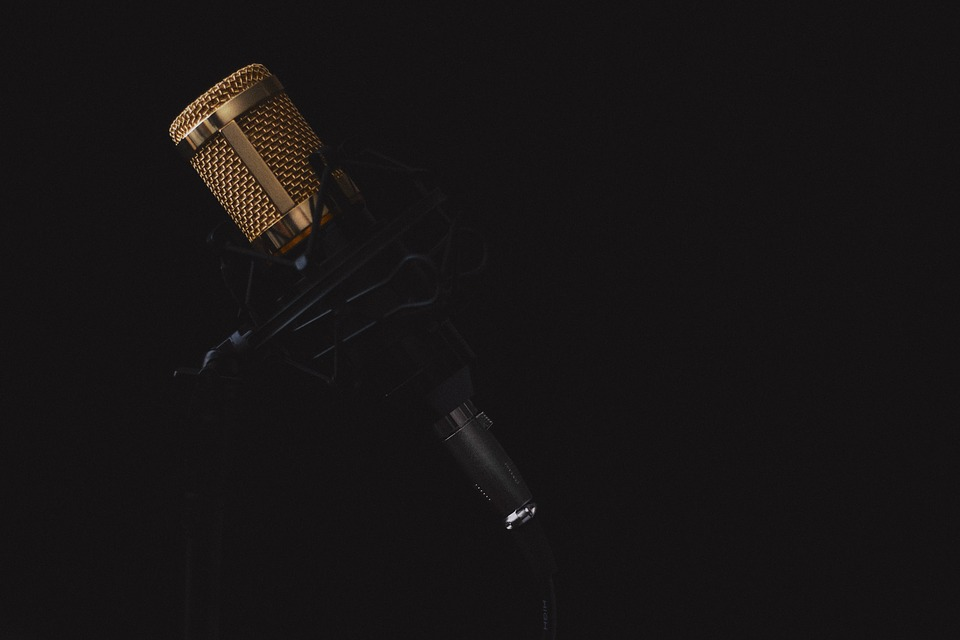 WordPress themes for dj producers
